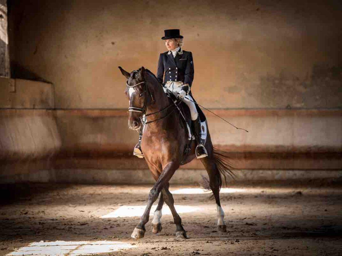 Life Old Horse-être est bon chevauchant un rend mieux Standard T-shirt femme